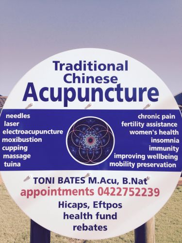 Toni Bates Acupuncture  Massage - Adwords Guide