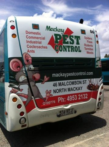 Mackay Pest Control - Adwords Guide